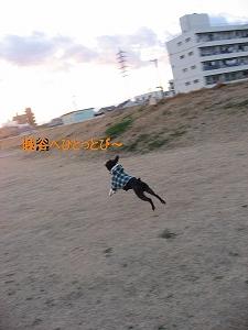 f0141516_094213.jpg
