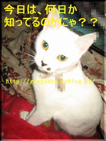 e0085147_1654358.jpg