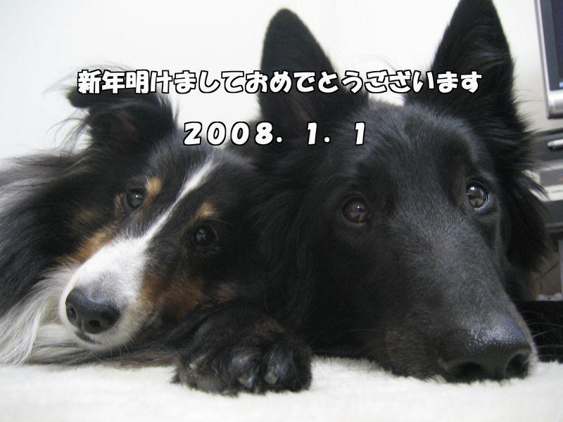 c0056871_15275262.jpg