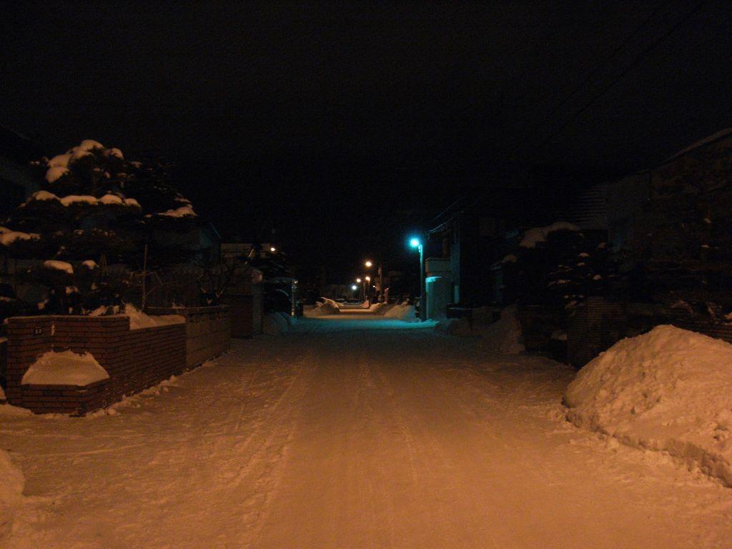 冷凍庫状態の札幌_c0025115_019021.jpg