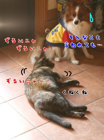 d0013149_003638.jpg