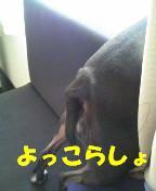 c0092097_19141784.jpg
