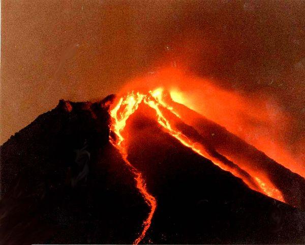 ヤツのウンチの色は「炎」の色です。_d0096499_16261251.jpg