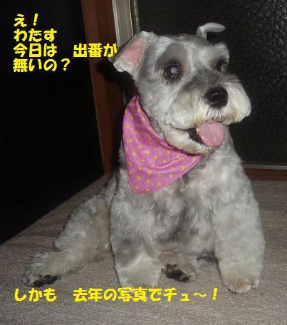 c0098501_201169.jpg