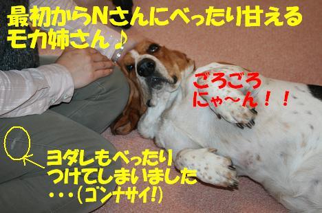 f0121712_14292414.jpg