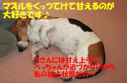f0121712_14293336.jpg