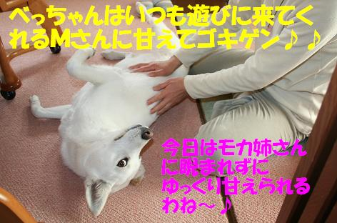 f0121712_14294222.jpg