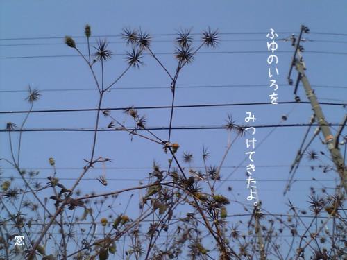 d0114517_12411977.jpg