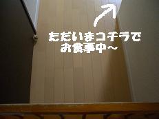 b0098660_191718.jpg