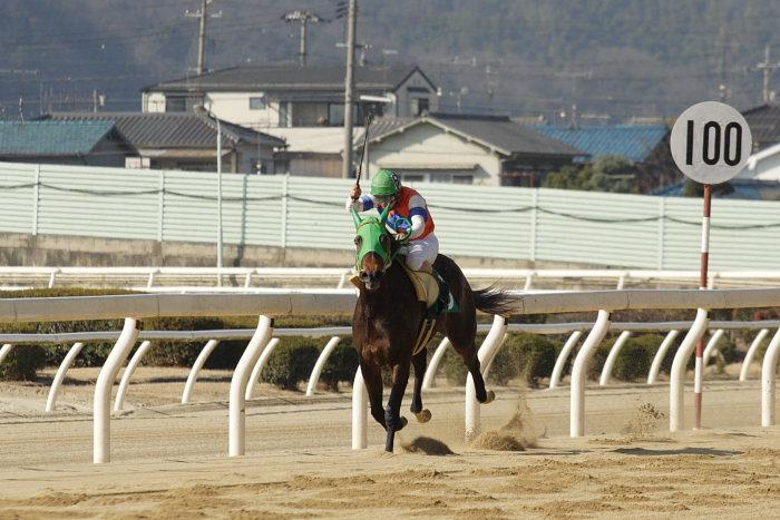 2008年1月6日(日) 福山競馬 5R_a0077663_931452.jpg