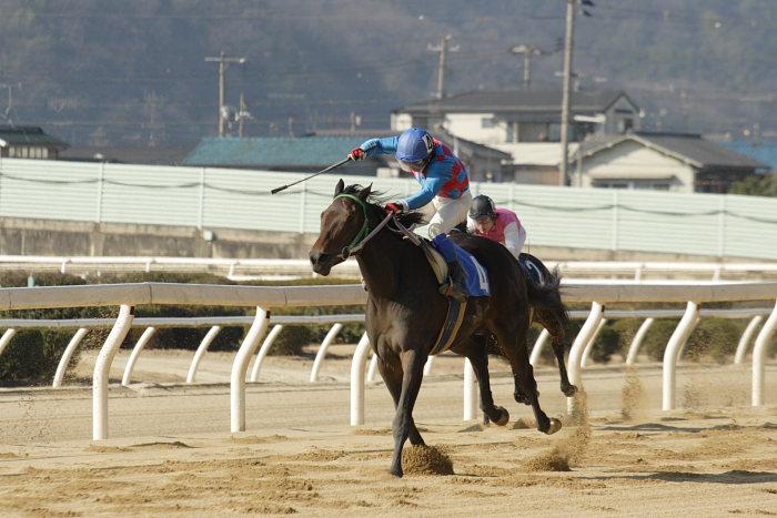 2008年1月6日(日) 福山競馬 5R_a0077663_932362.jpg