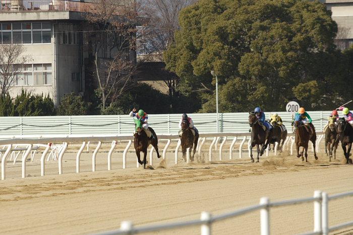 2008年1月6日(日) 福山競馬 5R_a0077663_93370.jpg