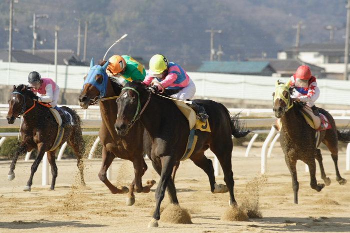 2008年1月6日(日) 福山競馬 5R_a0077663_934564.jpg