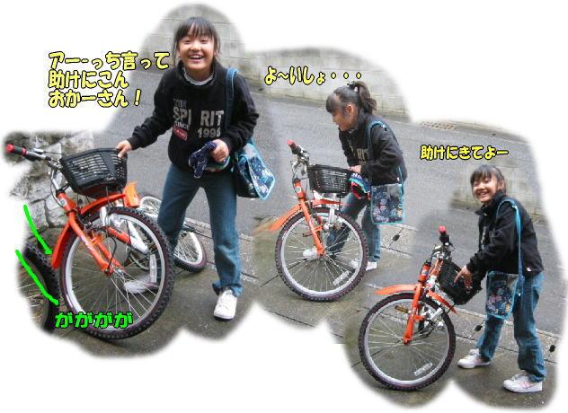 f0082367_10412461.jpg