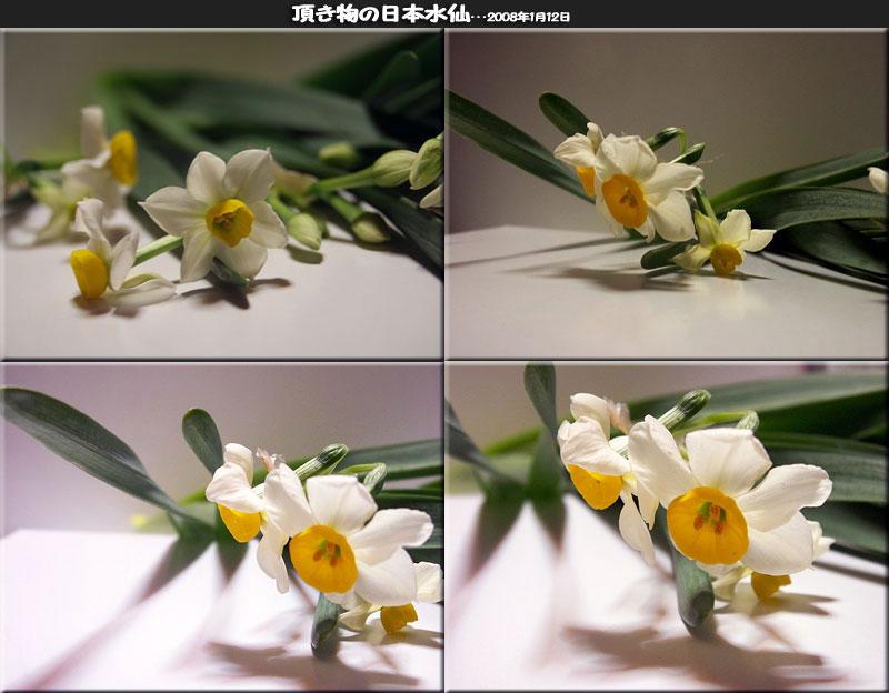 f0104569_2343919.jpg