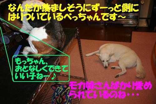 f0121712_143137.jpg