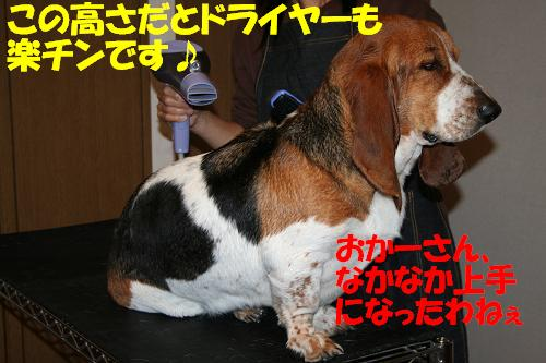 f0121712_143281.jpg