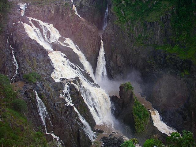 雨季の熱帯雨林 おすすめはキュランダ渓谷_f0050534_10215272.jpg
