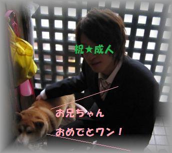 再び_c0049950_23152176.jpg