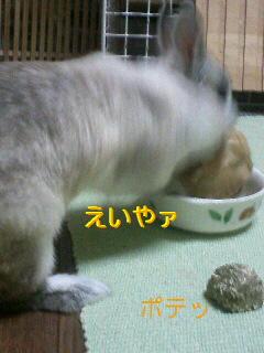 f0104057_20341760.jpg