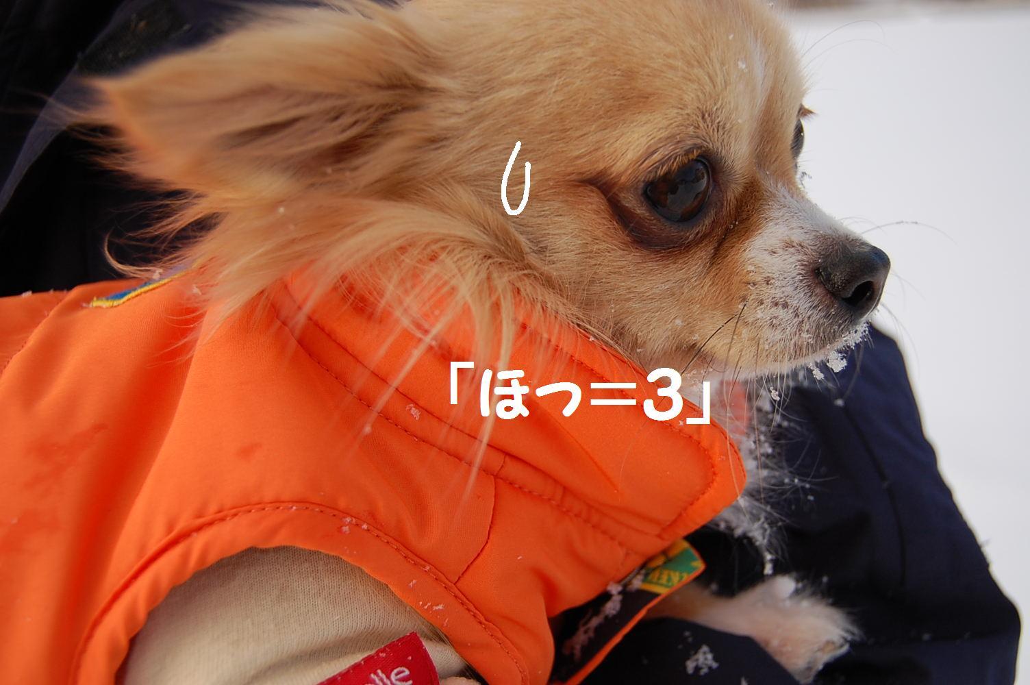 b0112758_16485822.jpg