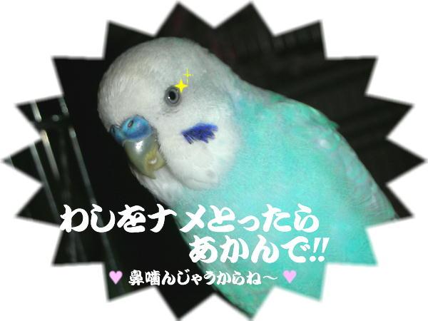 f0132055_11193371.jpg