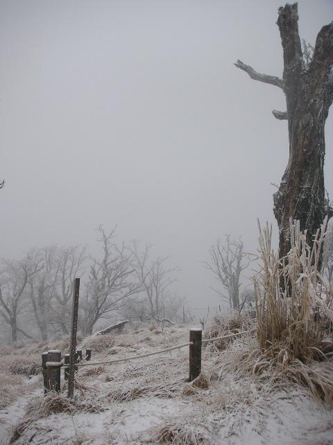 丹沢山稜 山歩記(やまあるき) 2日目 蛭ヶ岳_f0110366_21143540.jpg