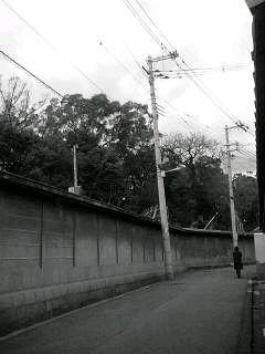 f0100480_19235596.jpg