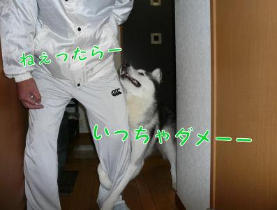 f0112407_0241674.jpg