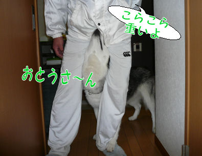 f0112407_0243781.jpg