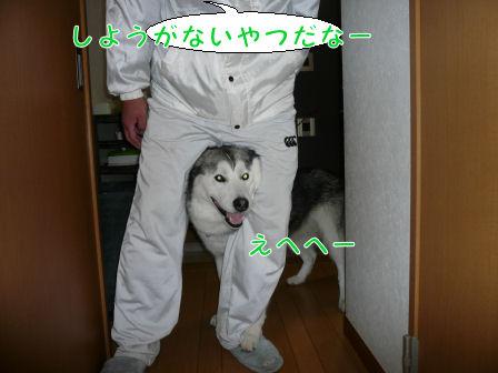 f0112407_0245257.jpg