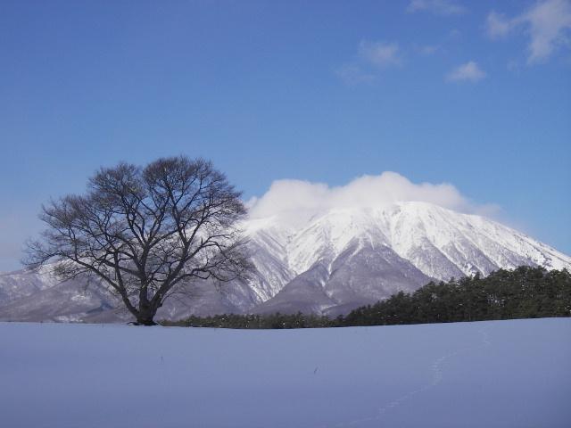 冬_f0105112_10385291.jpg