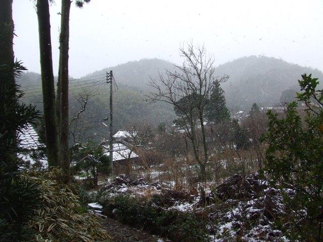 松江北山 澄水山(507m) ボッカ_d0007657_1558810.jpg