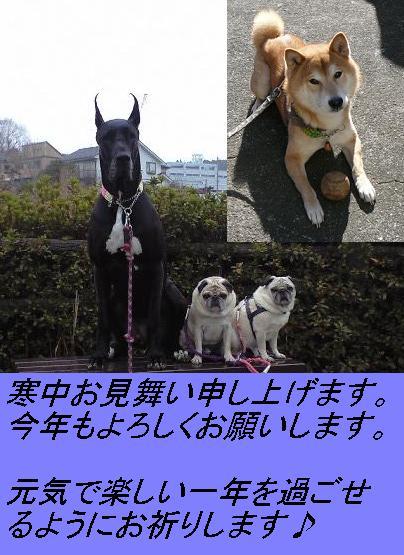 c0134215_17594465.jpg