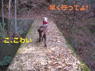 b0113725_22315073.jpg