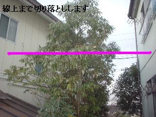 f0031037_20204448.jpg