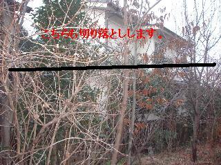 f0031037_20205894.jpg