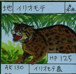 自家製カード その2_a0087957_6121182.jpg