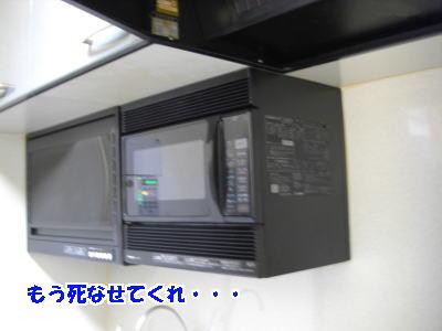d0020869_18275579.jpg