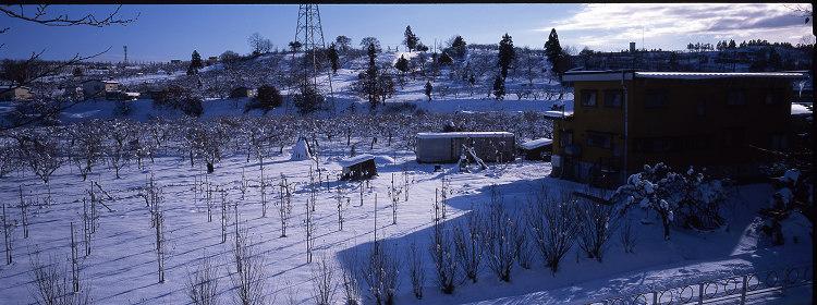 年始パノラマ・雪景色編_c0135079_5295415.jpg