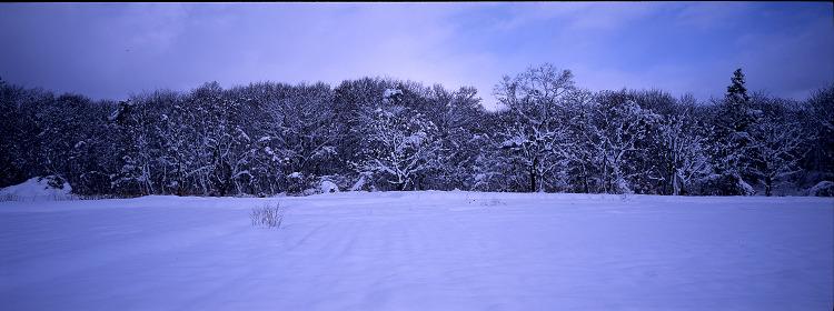 年始パノラマ・雪景色編_c0135079_530135.jpg