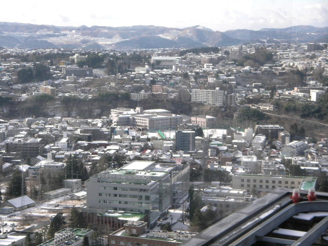 雪の朝_f0100593_1453323.jpg