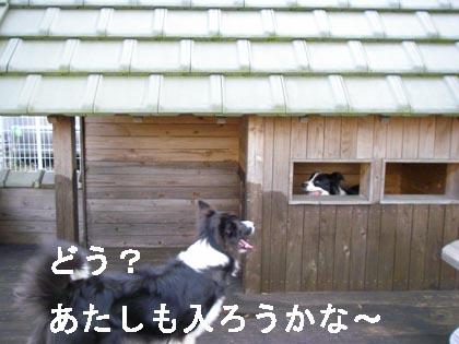 f0114893_2240158.jpg