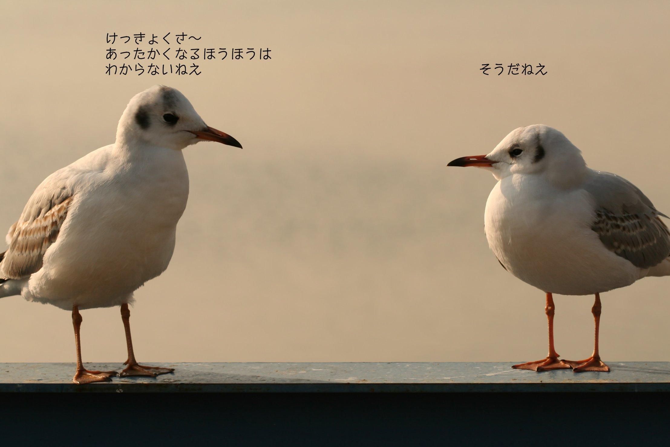 c0084097_75839.jpg