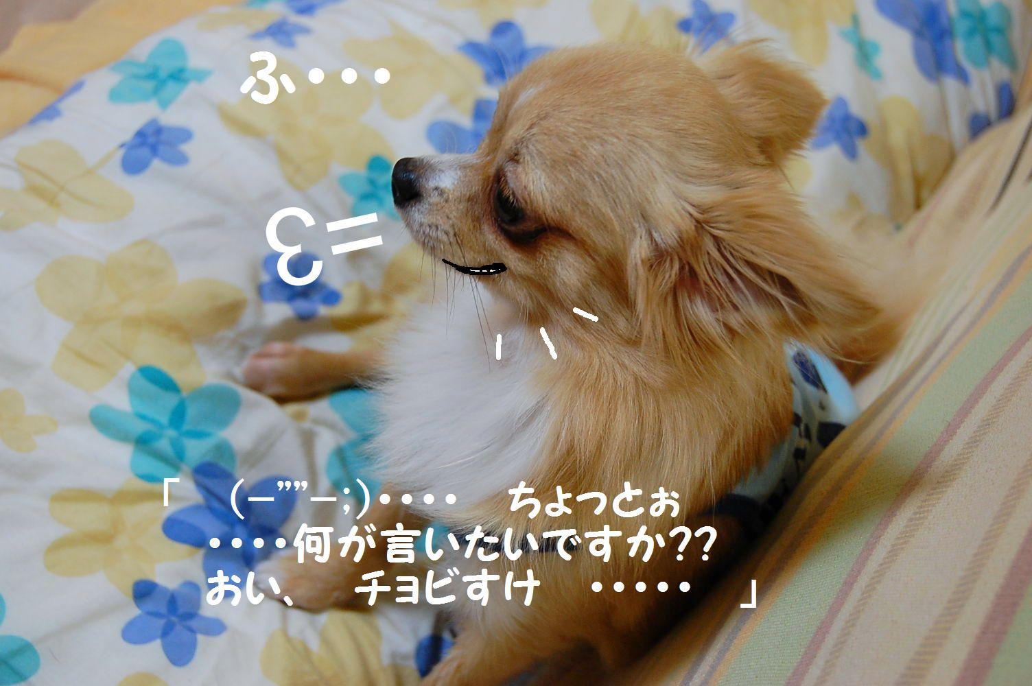b0112758_20343689.jpg