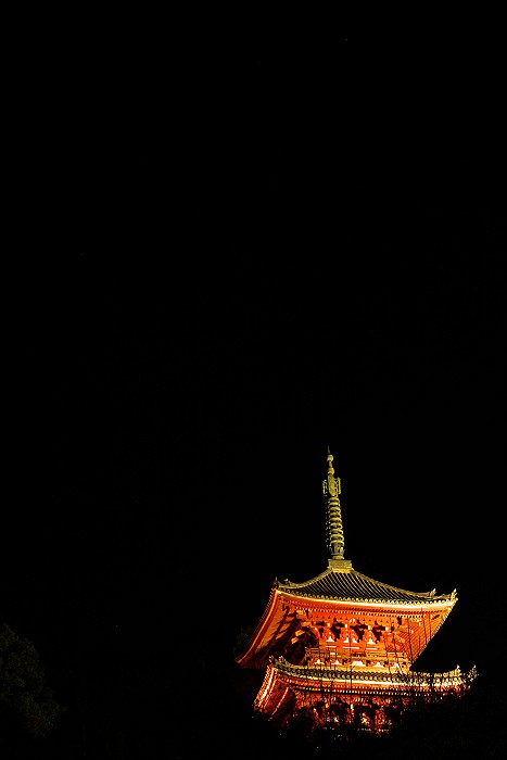 冬の西国寺三重塔_c0152379_8483043.jpg