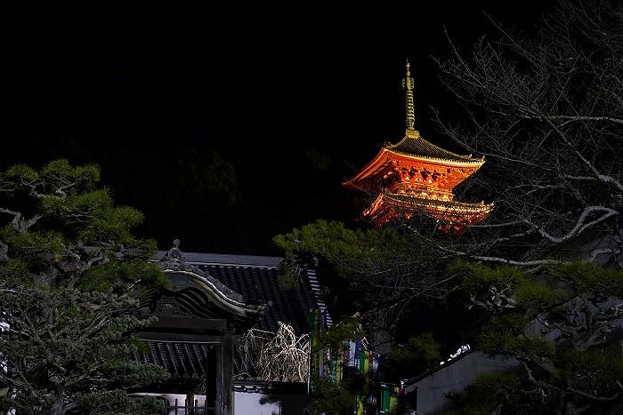 冬の西国寺三重塔_c0152379_8485123.jpg