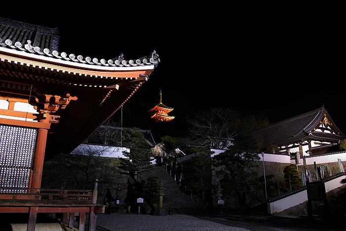 冬の西国寺三重塔_c0152379_849122.jpg
