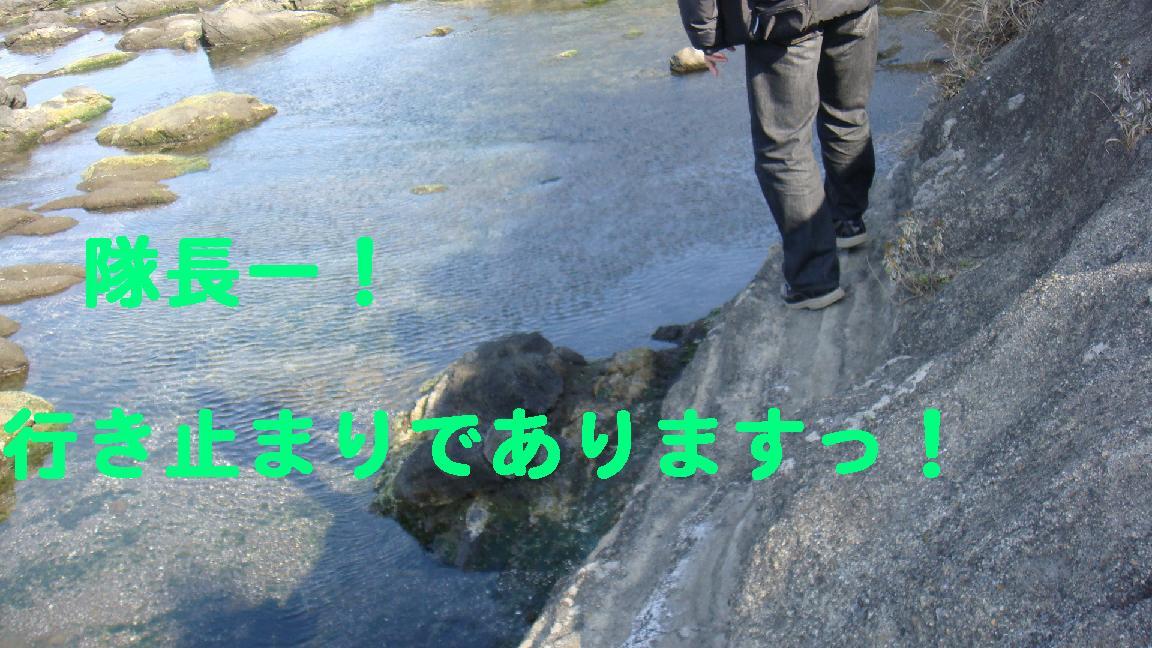 f0138304_118388.jpg