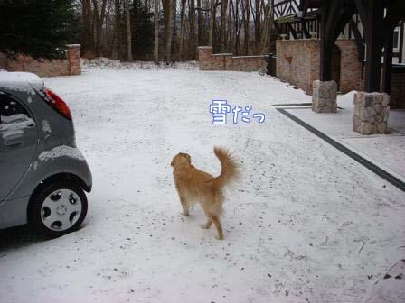 ちょっとだけの雪_f0064906_1750122.jpg